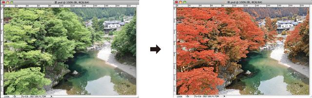 画像色補正__夏から秋へ